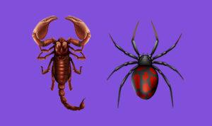 acidentes-por-escorpiao-e-aranha