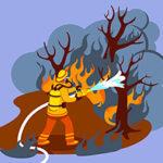 A Meteorologia nos Incêndios Florestais